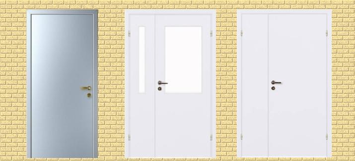 Строительные двери из металла