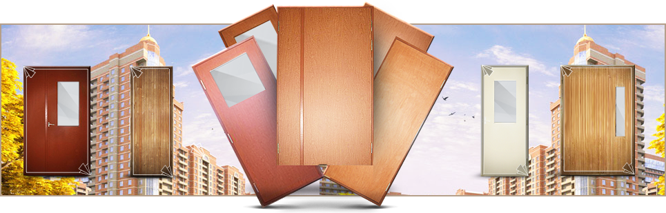 Строительные двери разных моделей