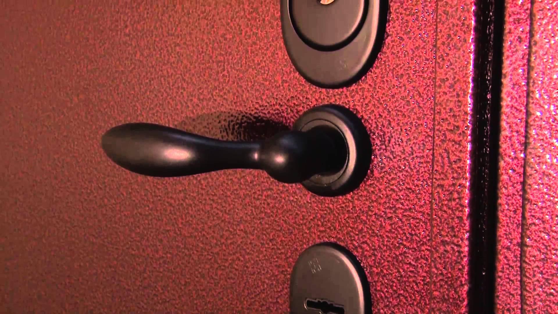 Дверь с порошковой окраской