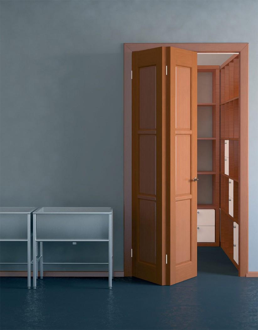 Дверь книжка для гардеробной
