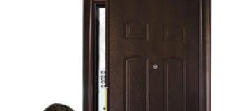 Мастер-ремонтник входных дверей