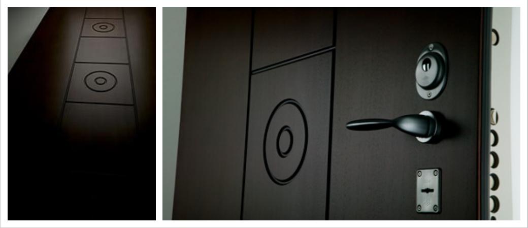 Дверь Барс