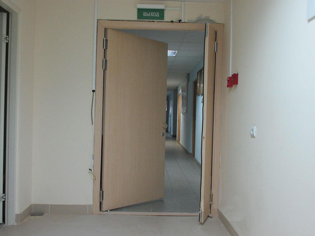 Маятниковая дверь из дерева