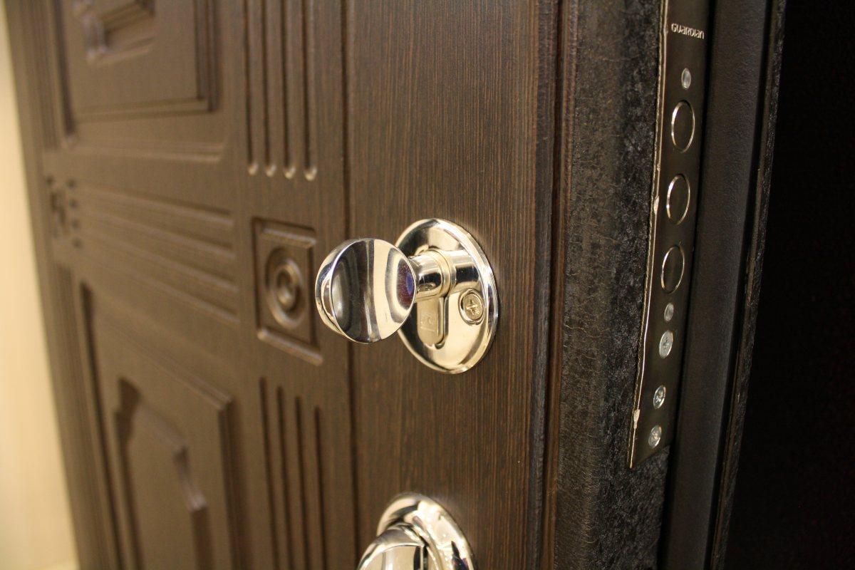 Внешний вид двери фирмы Торекс