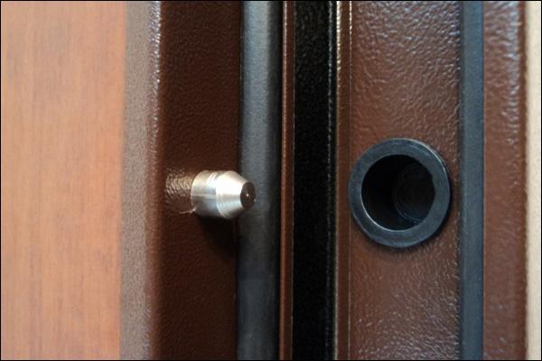 Противосъемный штырь на железной двери