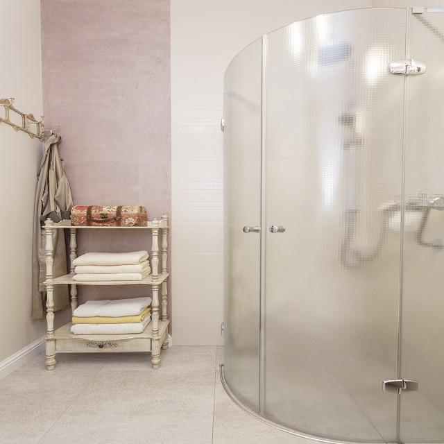 Матовая дверь в душ