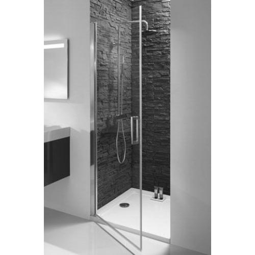 Распашная дверь в душ