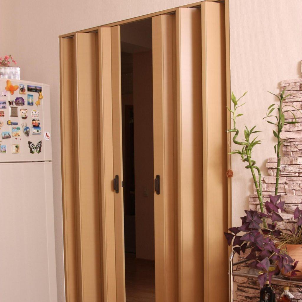 Внешний вид двери-гармошки