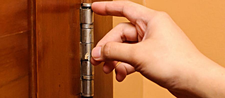 Петля двери