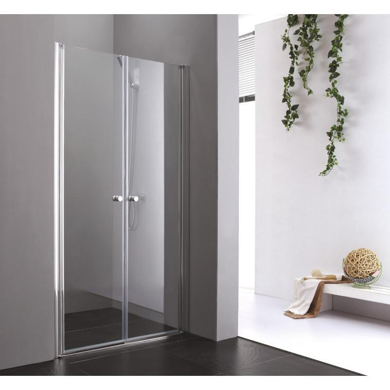 Двупольная дверь в душ