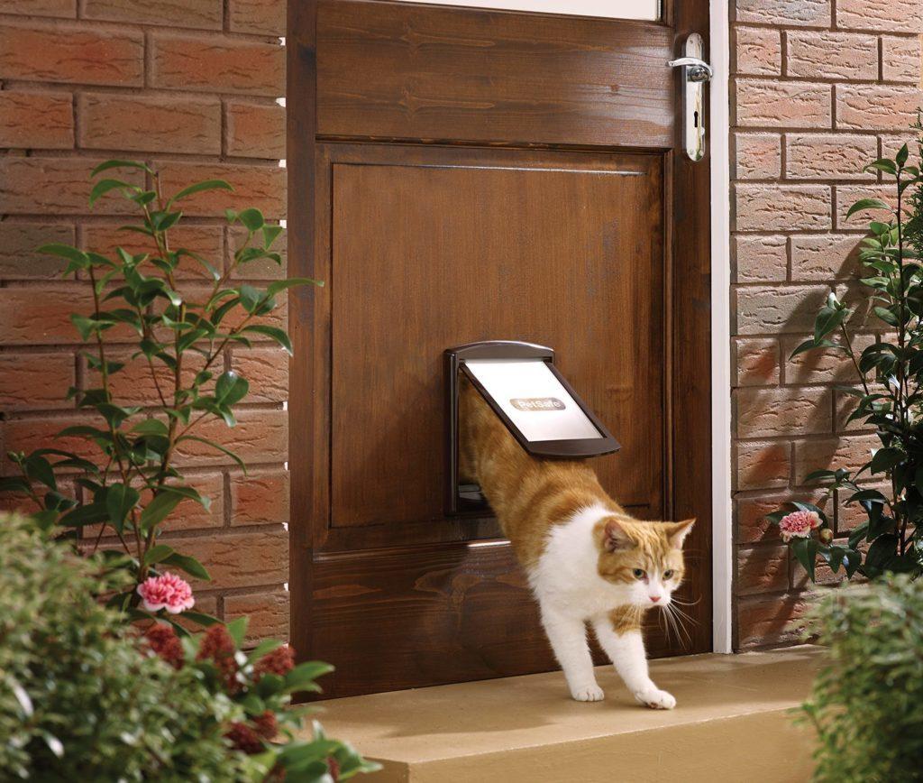 Проход для кошки в двери