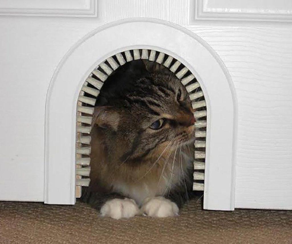 Лаз для кота с щеткой