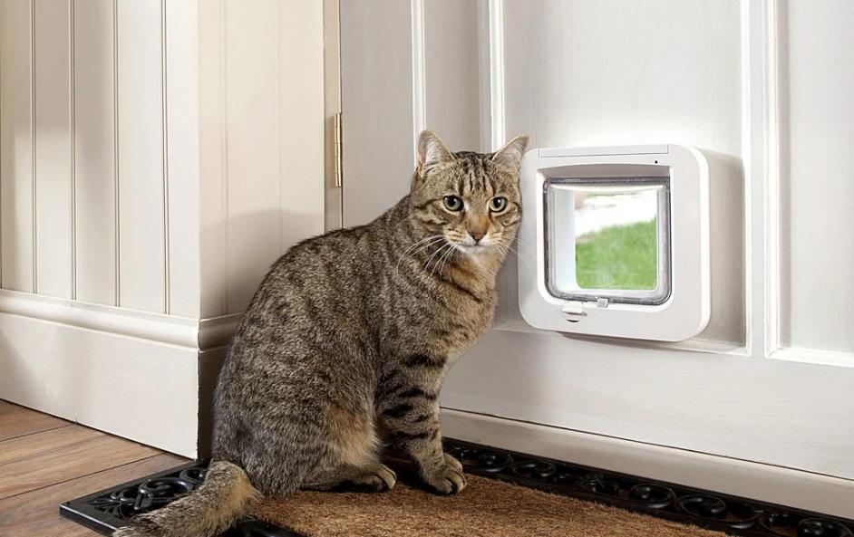 Окошко для животных в дверь